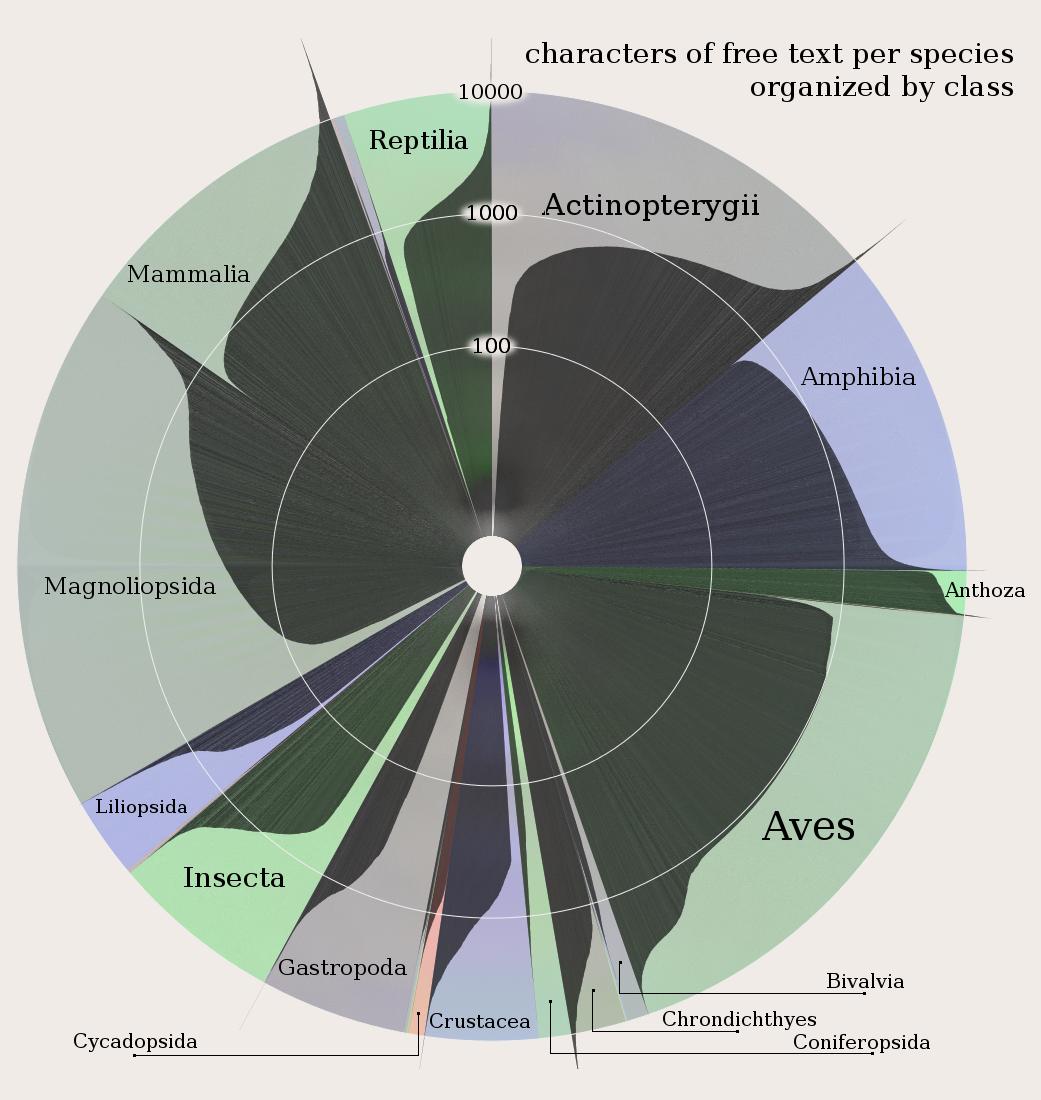 Visualization of statistical information by Elijah Meeks